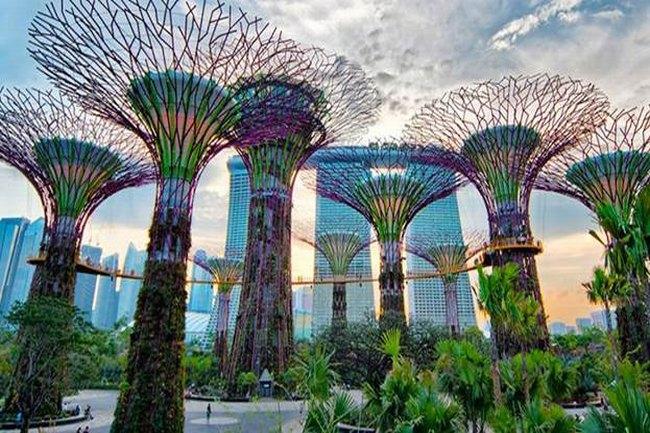 canh-dep-singapore-2